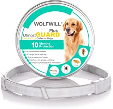 Amazon.es: pipetas para perros advantix