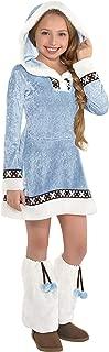 arctic princess costume