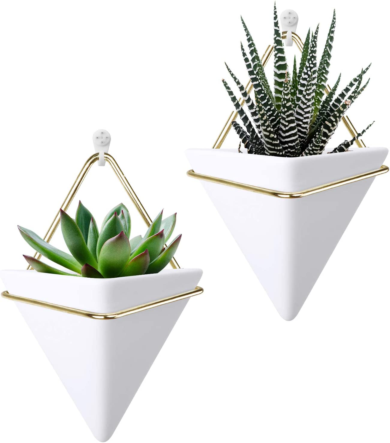 At the price HangerSpace Small Ceramic Wall Planter White Pack Manufacturer direct delivery Mini Succule 2