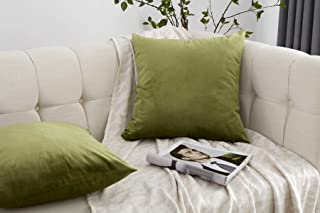 JLCROTENGRA Decorative Throw Pillow Covers,Velvet Cushion Covers for Couch Sofa Bedroom Accent Velvet Pillow Cases Set of 2 20x20 Forest Green