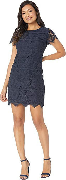 Short Sleeve Bordered Lace Shift Dress