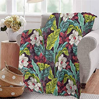 Luoiaax Plant Comfortable Large Blanket Exotic Nature Depicting Image of a Drawing with Vibrant Colored Leaves Botanical Microfiber Blanket Bed Sofa or Travel W91 x L60 Inch Multicolor