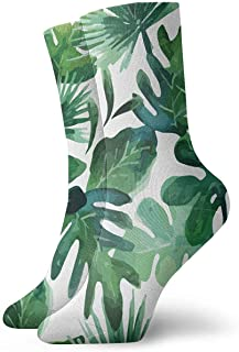 N / A, Tropical Leaves Palm Summer Calcetines Crew para hombre, mujer, niños, trekking, Performance, exterior 30 cm