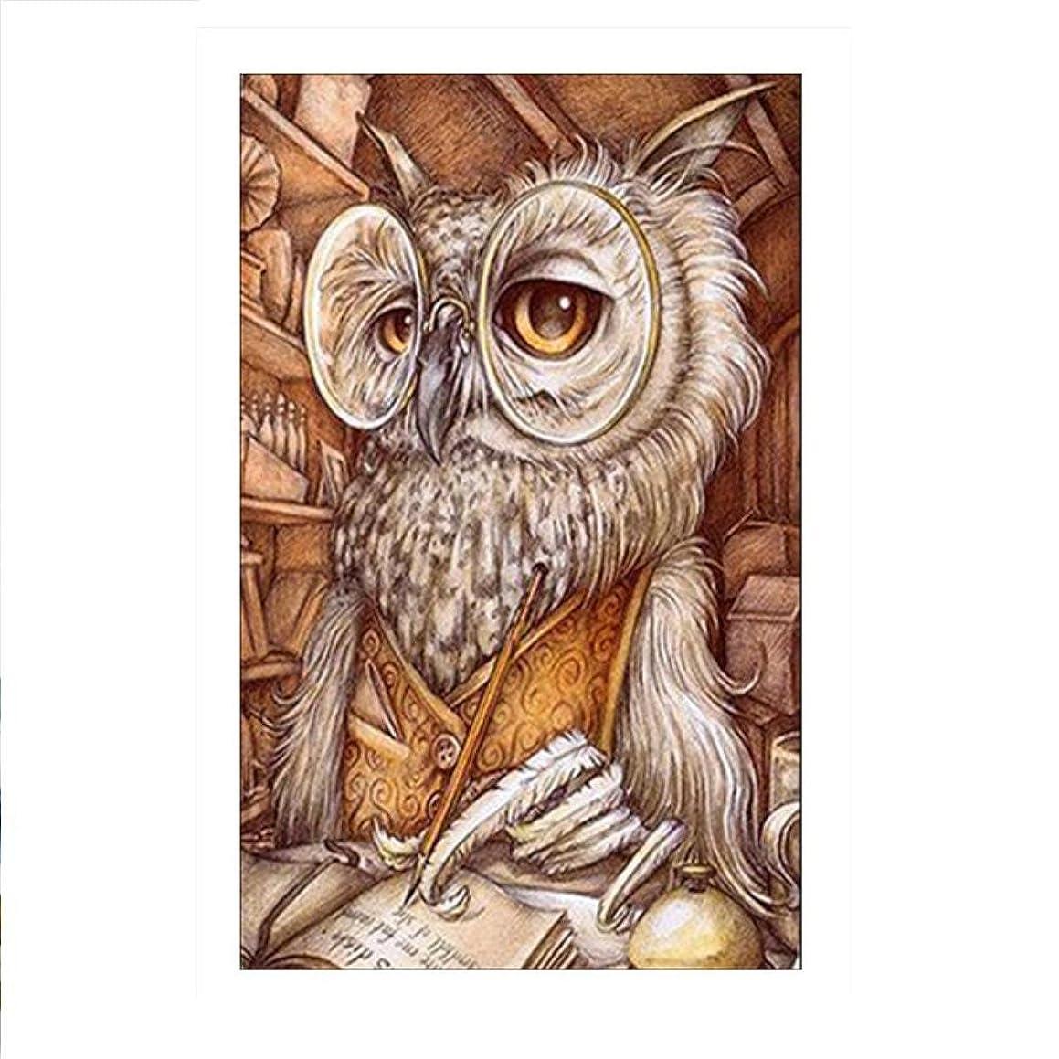 DIY 5D Full Drill Diamond Sticker Cross Stitch Painting Kits Arts Crafts Home Decor Owl Doctor 20 x 30cm (7.8