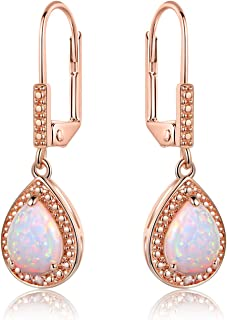 Barzel White Gold Plated or Rose Gold Plated Created Opal & Diamond Accent Drop Earrings