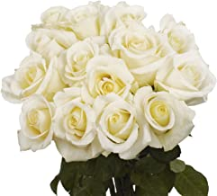 GlobalRose 50 White Roses - Flower Delivery- Beautiful Long Stems