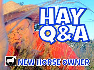 New Horse Owner: Hay Q&A