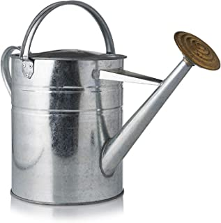 Watering Can-Quality Galvanized Metal with Removable Brass 10L