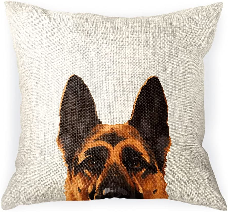 WIRESTER Sofa Pillow Case Decorative Ranking TOP1 Popular standard Throw Cover Cushion