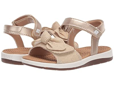 Sperry Kids Galley (Toddler/Little Kid) (Champagne) Girl