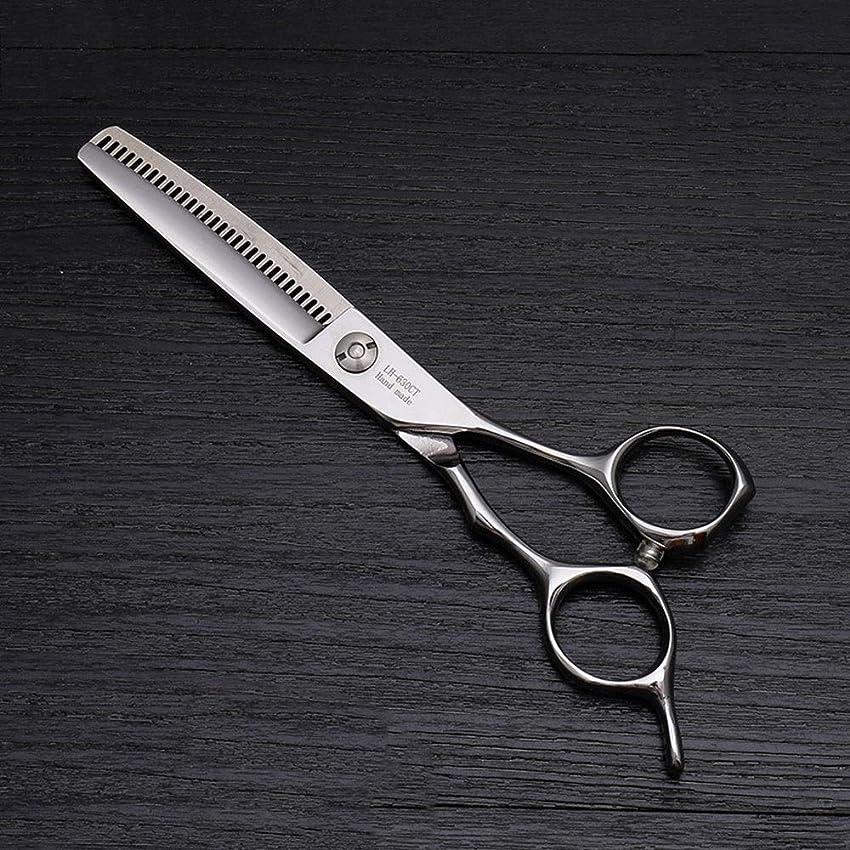 囲まれたギネスホイッスル6インチの高級ヘアカットはさみ、美容院の特別な髪はさみ モデリングツール (色 : Silver)