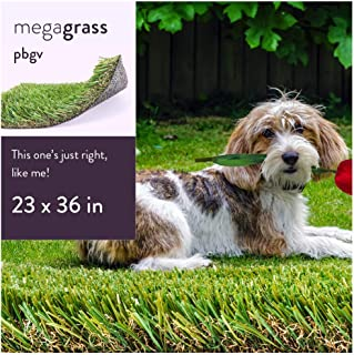 grass litter tray for dogs