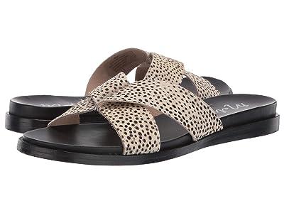 Matisse Wise Sandal (Black Spots) Women