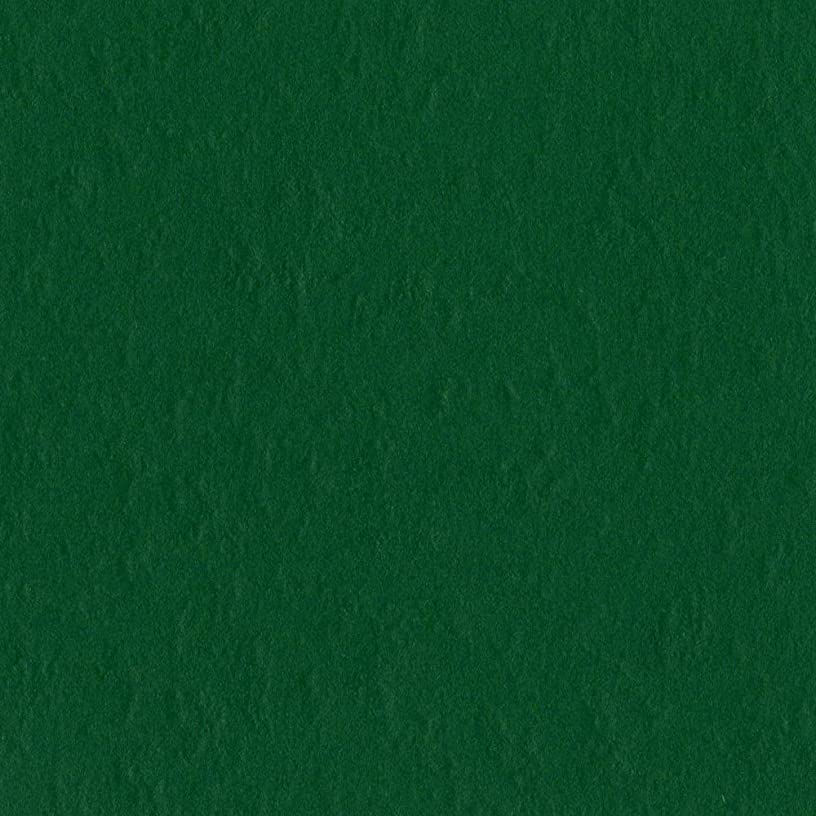 Bazzill Basics 19-5414 Prismatic Cardstock, Classic Green, 25 Sheet Pack, 8.5 x 11 Inches