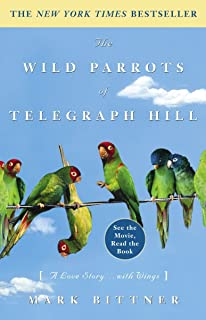 Best hill parrot price Reviews