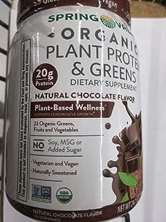 Spring Valley Vegan Organic Plant Protein & Greens, Natural Chocolate, 24.7 oz