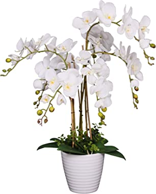 AMERIQUE Unique and Gorgeous Phalaenopsis Orchid Artificial Plant, Silk Flowers with Real Touch Leaves, with Nursery Pot, 2.5', White