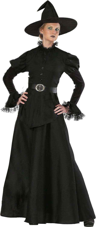 Classic Black Witch Plus Size Women's Fancy Dress Costume 2X