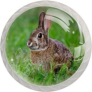 Boutons De Tiroir Verre Cristal Rond Poignées d'armoires tirer 4 pièces,lapin dans l'herbe