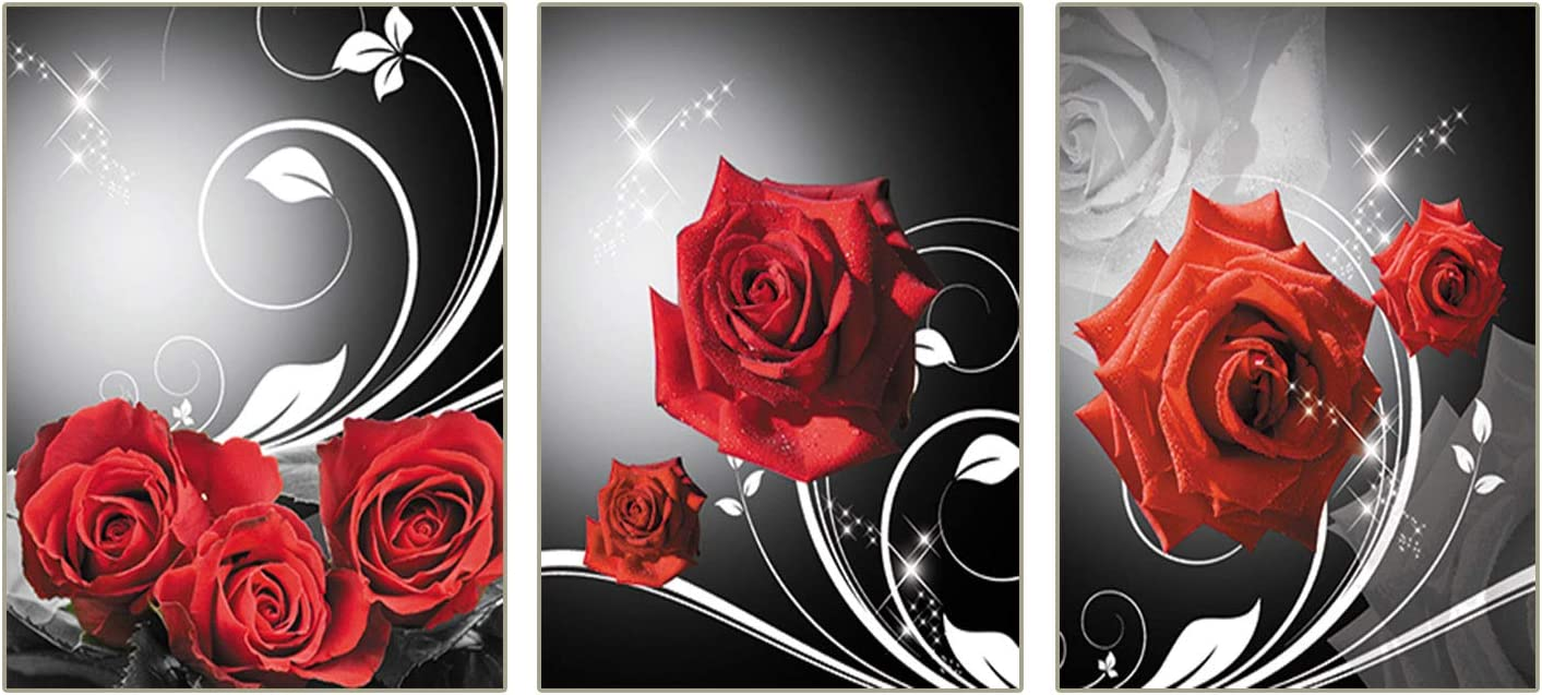 """Red Rose Flowers Pictures Prints Black and Modern Romantic Florals Wall Art Set Of 3 Bathroom Kitchen Bedroom Washing Room Spa Wall Decor Home Decorations Frameless (8""""X10""""Canvas Picture)"""