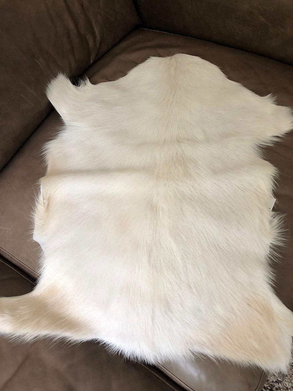 Marsmore Mongolisches Ziegenfell, Himalaya Ziegenfell Weiss, glattes Fell