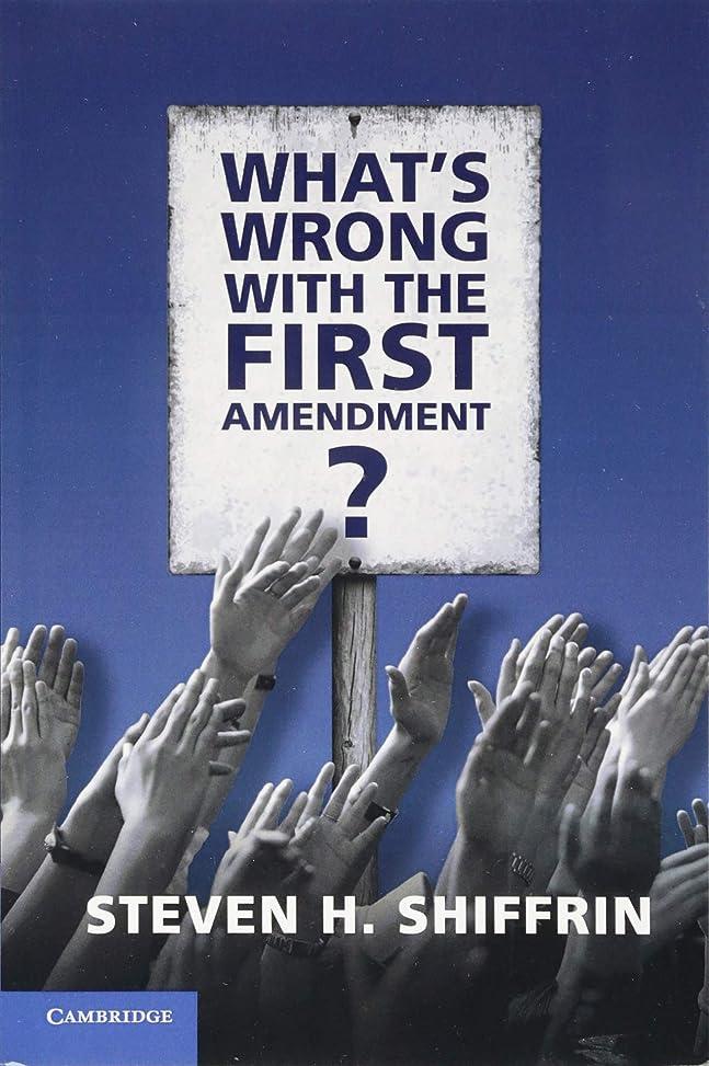 考古学的な絵What's Wrong with the First Amendment