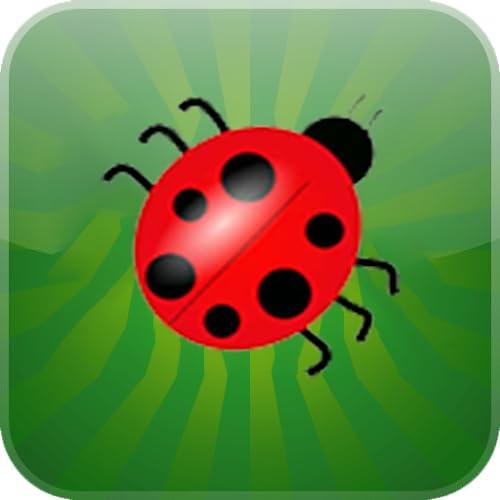 Ladybug Coin World Game