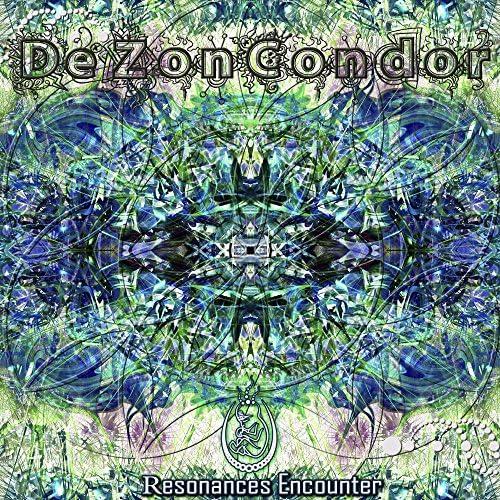 DeZonCondor