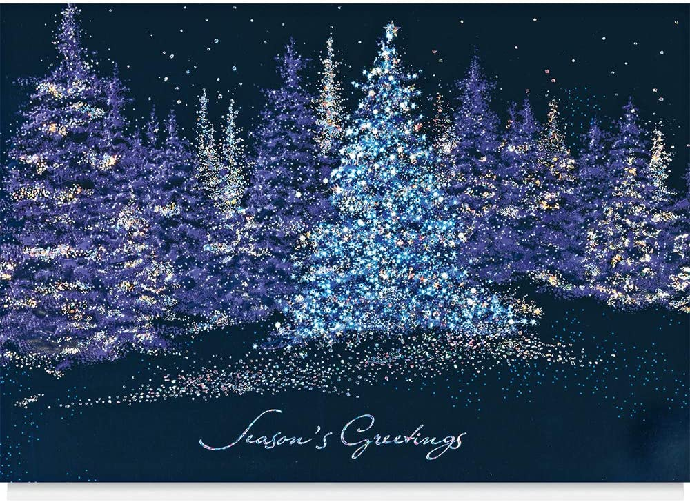 The Animer and price revision Gallery Collection - 25 Greeting Christmas Very popular Cards Business
