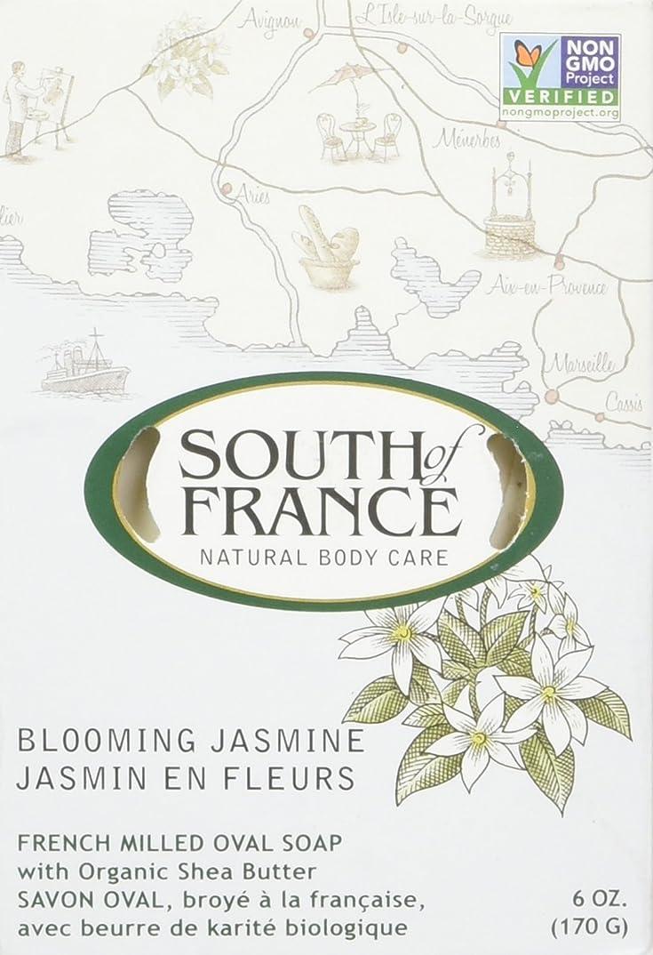 明るい石油悪行South of France - フランスの製粉された野菜棒石鹸の咲くジャスミン - 6ポンド