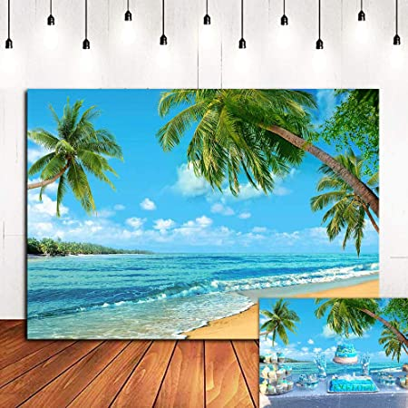 Fotohintergrund Mit Sommerinsel Szene Strand Meer Kamera