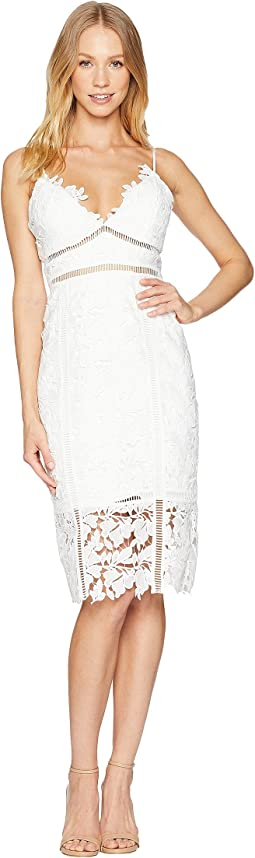 Botanica Lace Dress