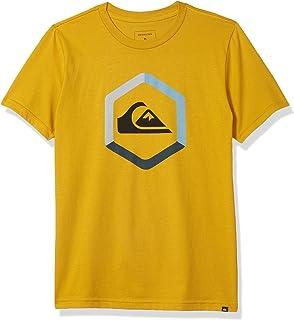 Quiksilver boys THE BOLDNESS TEE Shirt