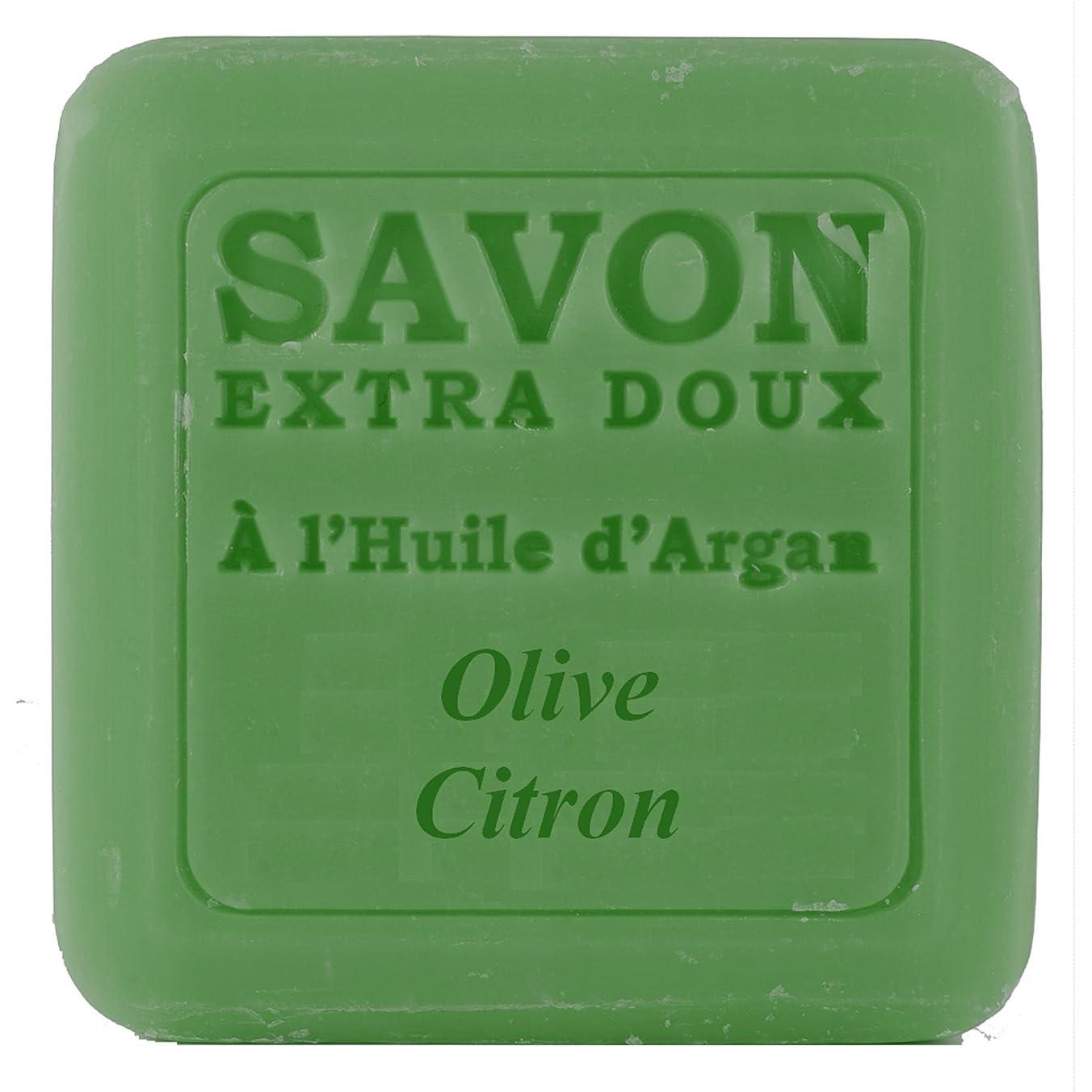 あなたのもの程度舌Plantes&Parfums [プランツ&パルファム] アルガンオイルソープ100g オリーブレモン