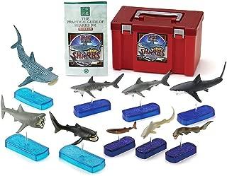 カロラータ サメの仲間 フィギュア ( 立体図鑑 ) サメ リアル フィギュアボックス [解説書/スタンド付き] 食品衛生法クリア 9種
