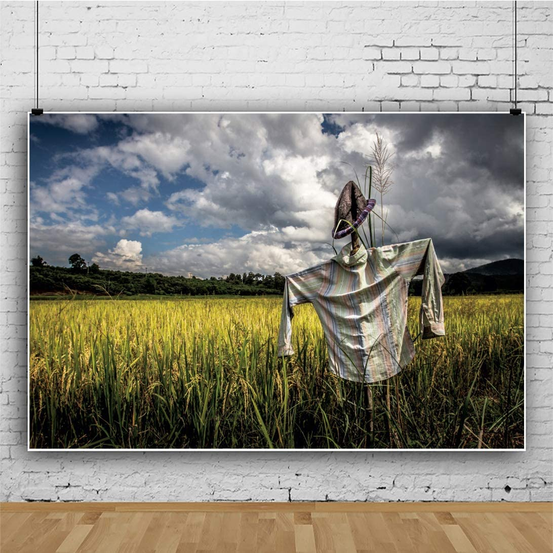 Leowefowa Cloudy Sky Countryside Wheat Field Scarecrow Backdrop 12x10ft Harvest Festival Vinyl Background Rural Scenery Child Adult Photo Shoot Harvest Party Decor Wallpaper Selfie Props