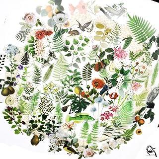 65PCS Small Scrapbook Stickers, Doraking DIY Decoration Transparent Sulfuric Paper Green Plants Stickers for Scrapbook, De...