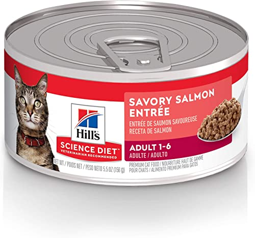 lowest Hill's high quality Science Diet Wet Cat Food, Adult, Savory sale Salmon Recipe, 5oz Cans, 24 Pack outlet online sale