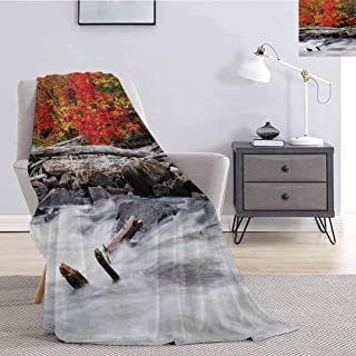 Luoiaax Driftwood Bedding Fleece Blanket Queen Size A Raft of Driftwood Lies by a Rushing Rocky Stream Autumn Season Forest Digital Image for Living Room Bed or Couch Blanket W60 x L80 Inch Red
