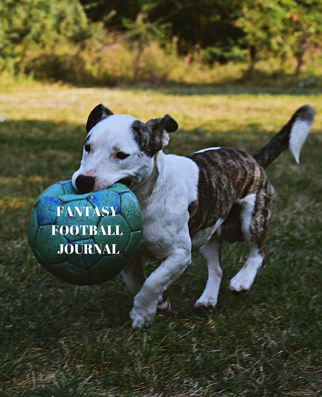 ジャンルマンモスウールFantasy Football Journal: Plot Your Way to FPL Success with this 7.5