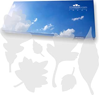 imaggge.com Window Alert - Anti-Collision Stickers to Prevent People and Bird Strikes on Window Glass - Set of 39 Tree Leaves Decals - Color: Translucent/Dusted
