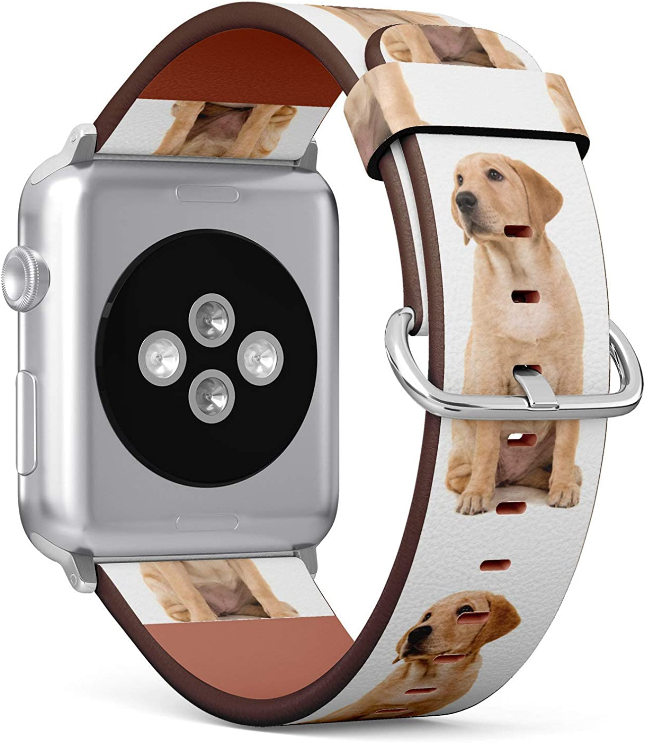 (Golden Retriever Puppy) Patterned Leather Wristband Strap for Apple Watch Series 4/3/2/1 gen,Replacement for iWatch 42mm / 44mm Bands