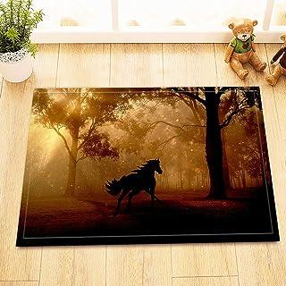 BIRSY Cute Funny Dog Bathroom Mat Door Mat Anti-Slip Floor Indoor Entrance Mat Children 40X60CM Bathroom Accessories 20x32...