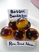 Bosque Bumblebee Tomato Seeds! Beautiful Sweet Tomatoes Comb. S/H See Our Store!