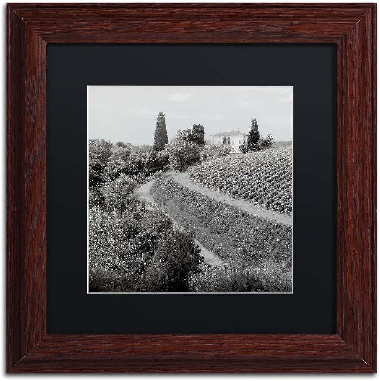 Trademark Fine Art Tuscany V by Alan bluestein, Black Matte, Wood Frame, 11  X 11