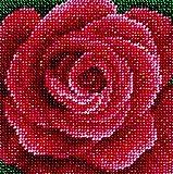 'Bright Passion', Perlenstickerei-Set, Kreuzstich, moderne Stickerei, 100 % Glas-Rocailles, Preciosa, Nadelspitze, Handarbeit, Tapisserie-Set, Nadelkunst, Dekoration