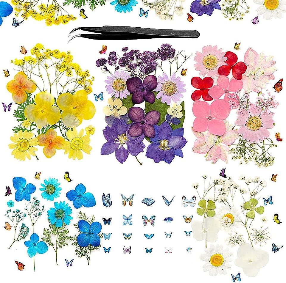 Natürliche Getrocknete Blumen, DIY Gepresste Blumen Getrocknete Blüten, Gemischte Getrocknete Blätte, Getrocknet Gänseblümchen, Schmetterlinge Aufkleber für DIY Harz, Scrapbooking, Basteln