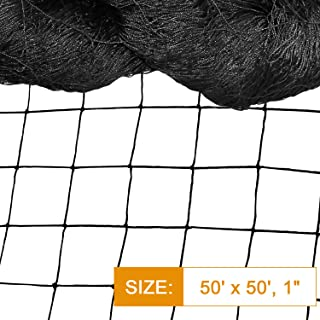 "DQS Bird Netting - 50' x 50' Reusable Anti - Bird Net with 1"" Square Mesh Protect Tree, Plant & Vegetables from Poultry& Deer, Heavy Duty Netting as Fruit Net, Aviary Netting for Farm, Orchard"