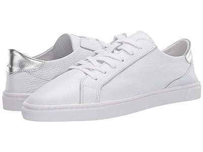 Steve Madden Glove Sneaker (Silver) Women