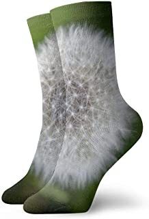 OUYouDeFangA, OUYouDeFangA - Calcetines Cortos de algodón para Adultos, diseño de Diente de león, Color Blanco